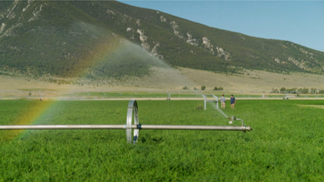 Dr. Williams Webinar on Reusing Water for Field Irrigation